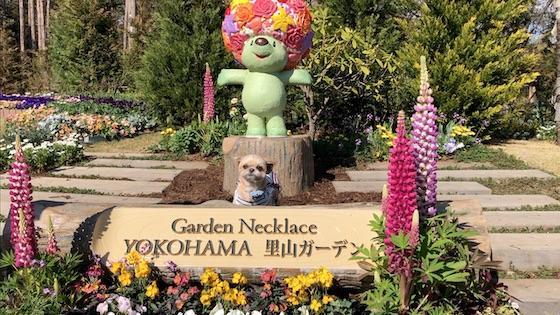 里山ガーデンフェスタ2019春